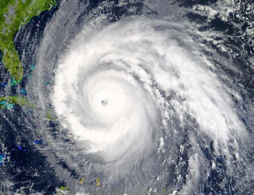 HURRICANE SAFETY TIPS FOR YOU AND YOUR PET
